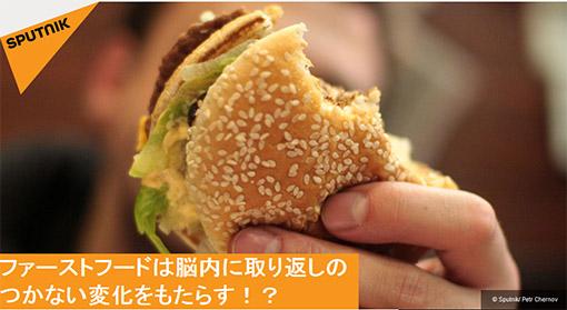 junkfood.jpg